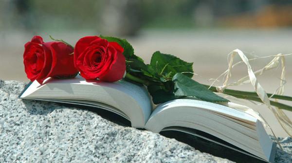 llibres-roses-045