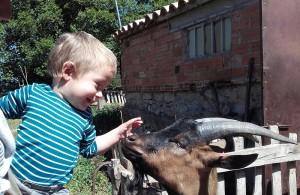 BERGUEDA_FORMATGERIA CUIROLS(5)