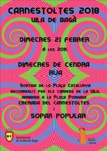 carnaval bagà 4