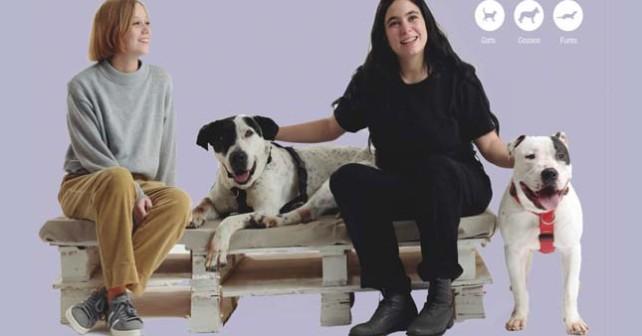 PORT gossos