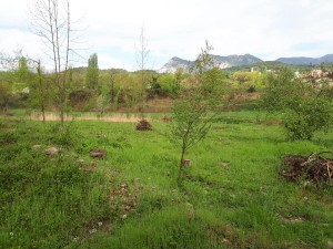 Ribera de Vilada